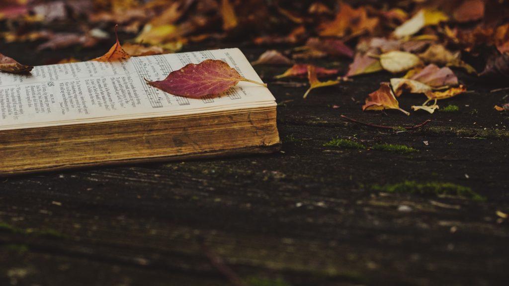 libro tra le foglie